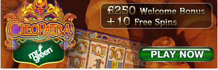 Cats Gone Wild Slot - Try Playing Online for Free